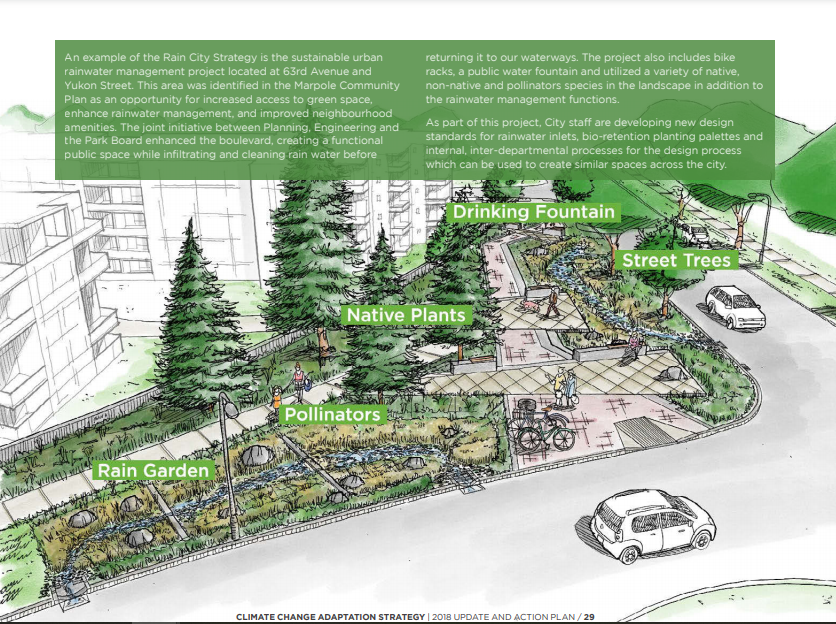 Image of a sustainable urban rainwater management project in the City of Vancouver. The schematic includes incorporation of greenscaping as a way of not only beautifying the streetscape, but also to provide functional purposes such as rainwater management and small areas of habitat refugia. The image shows the integration of sustainable design with climate adaptation actions. Specific foci are on the inclusion of more city street trees, native plants, areas for pollinators, rain gardens, and the creation of common spaces for gathering.
