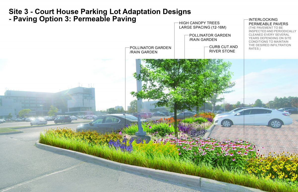 Visual of a suburban parking lot in Brampton (County Court Courthouse) that incorporates adaptation action neighbourhood design strategies to building community-level resilience to the impacts of climate change. This design incorporates pollinator and rain gardens with salt tolerant species to make up parking lot islands, high canopy trees with large spacing (e.g., 12-16 m salt tolerant species), curb cuts and river stone (to improve inflow and infiltration), grass block pavers (to improve inflow and infiltration). The image is colourful with a focus on ecosystemic and other design solutions.