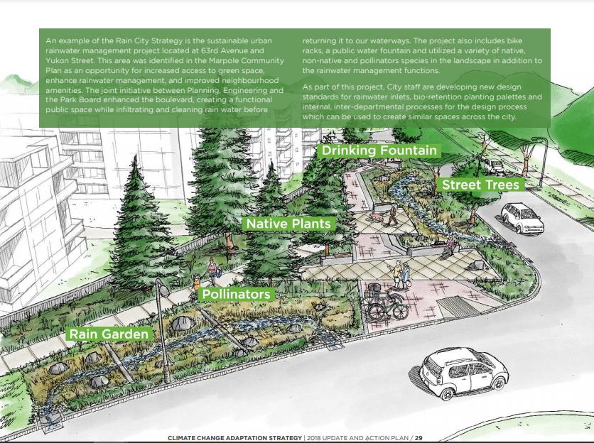 Image d'un projet de gestion durable des eaux de pluie urbaines dans la ville de Vancouver. Le schéma comprend l'incorporation d'un aménagement vert comme moyen non seulement d'embellir le paysage de rue, mais aussi de fournir des objets fonctionnels tels qu'une gestion des eaux de pluie et de petites zones de refuge d'habitat. L'image montre l'intégration de la conception durable avec les mesures d'adaptation aux changements climatiques. Des accents particuliers sont mis sur l'inclusion d'un plus grand nombre d'arbres dans les rues de la ville, de plantes indigènes, de zones pour les pollinisateurs, de jardins pluviaux et sur la création d'espaces communs pour les rassemblements.