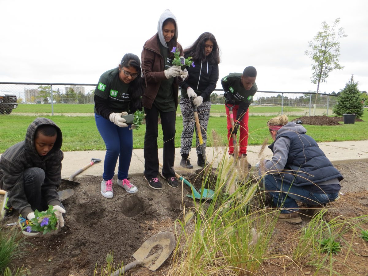 Image showing a group of students from Fletcher's Creek Senior Public School helping to plant the bio-filter swales.