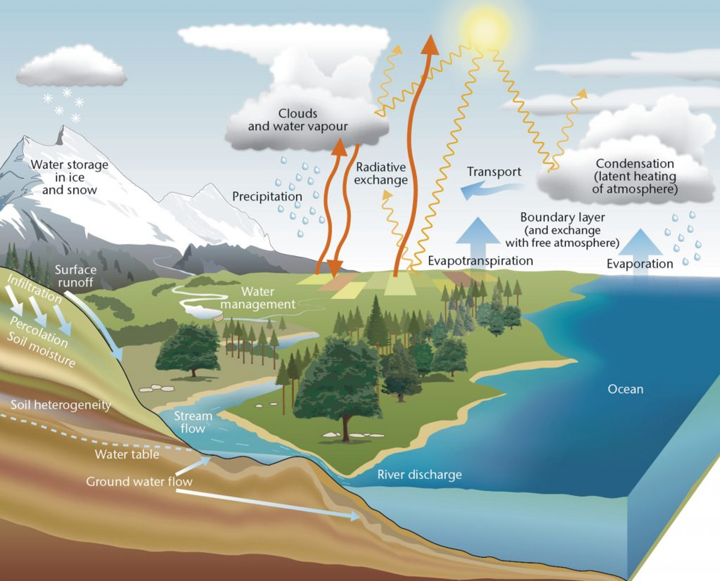 Schematic diagram showing the components, processes and interactions within the water cycle. In this cycle, water that evaporates from oceans is transported over land where it falls as precipitation. This water then either moves back to the atmosphere through evapotranspiration, is stored as ice or snow, or makes its way to rivers/streams either directly and rapidly, through overland flow, or slowly, through soil and groundwater. It then eventually flows back to the ocean, where the cycle continues.