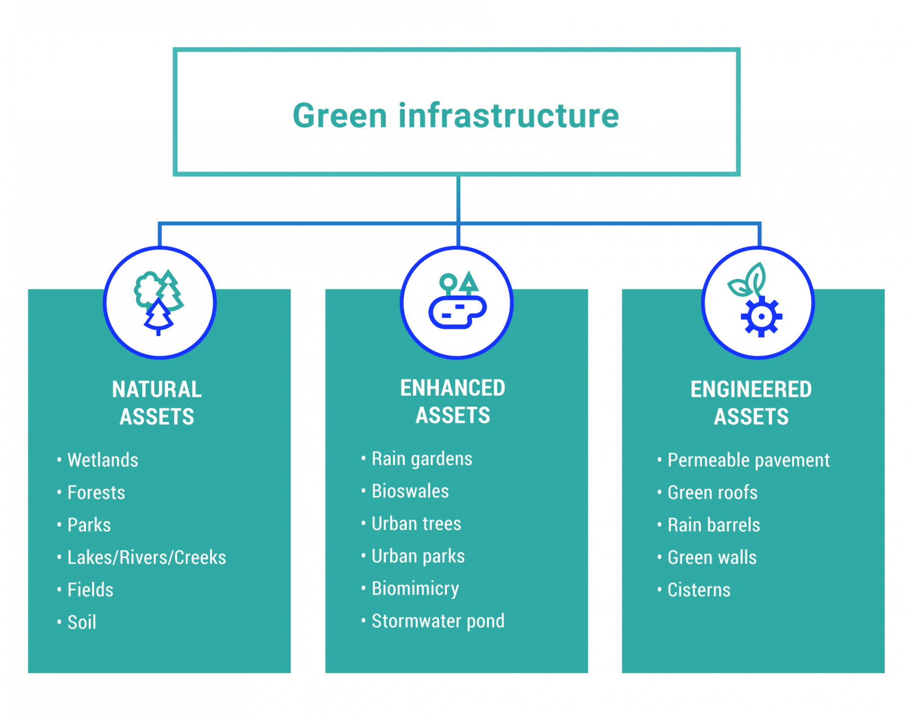 Graphical diagram showing the three categories of green infrastructure: natural assets, enhanced assets, and engineered assets. Natural assets include wetlands, forests, parks, lakes, rivers, creeks, fields and soil. Enhanced assets include rain gardens, bioswales, urban trees and parks, biomimicry and stormwater ponds. Engineered assets includes permeable pavement, green roofs, rain barrels, green walls and cisterns.