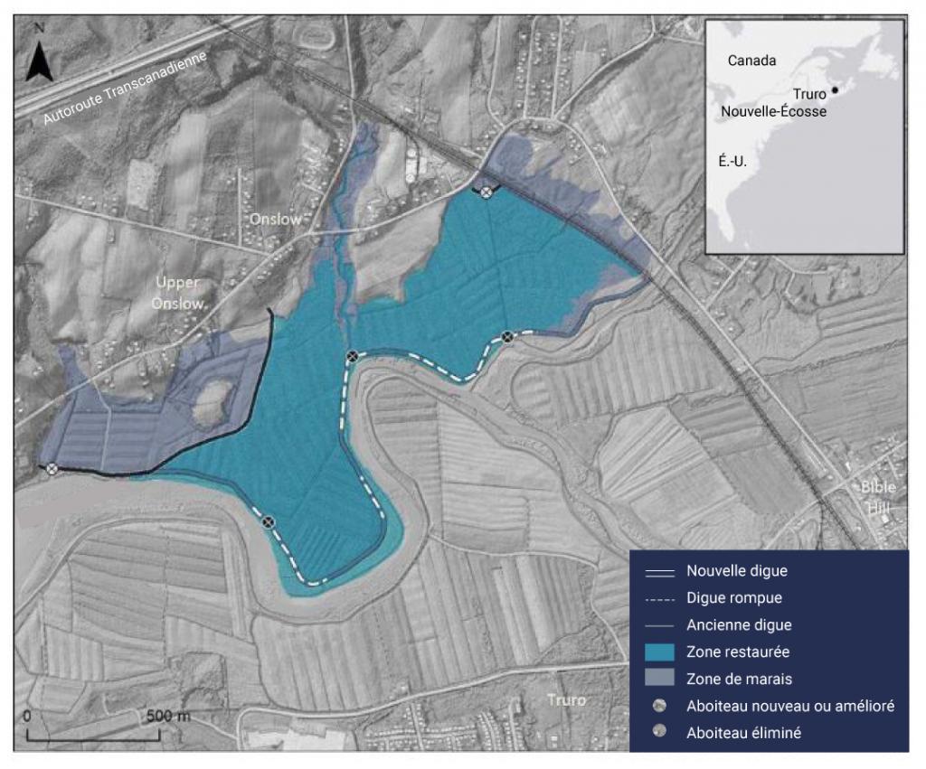 Carte du marais North Onslow à Truro, en Nouvelle Écosse, illustrant l'étendue de la zone à restaurer en tant que marais côtier. La carte montre que la suppression de l'ancienne digue a permis de restaurer le marais. Des aboiteaux nouveaux ou améliorés et de nouvelles digues ont été construits pour protéger les routes et les terres agricoles environnantes.