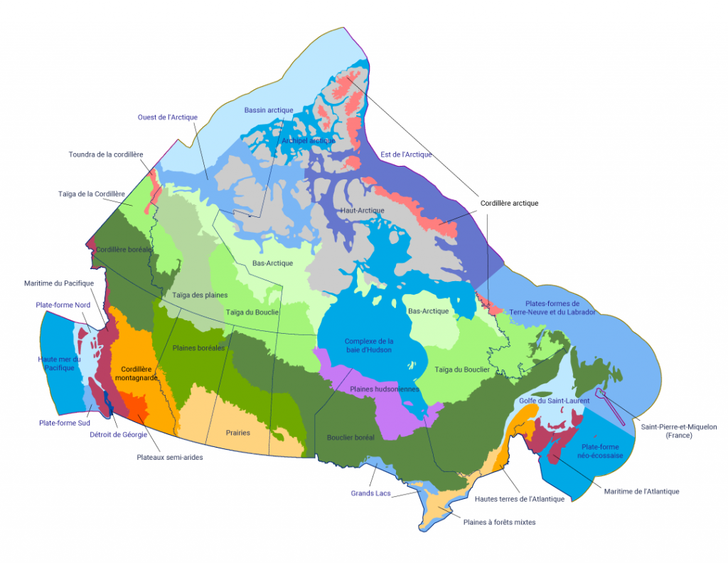 Carte du Canada, y compris ses eaux côtières, qui présente les 18 écozones terrestres, 12 écozones marines et 1 écozone d'eau douce du pays. Le Bouclier boréal est l'une des plus grandes écozones, s'étendant de Terre‑Neuve au nord de la Saskatchewan, en passant par le centre du Québec et de l'Ontario. La Taïga du Bouclier est située au‑dessus du Bouclier boréal et sous le Bas‑Arctique. L'île de Baffin est classée comme écozone du Haut‑Arctique et sa côte nord est la Toundra de la Cordillère. Les provinces des Prairies contiennent une écozone des Prairies au sud et les Plaines boréales au nord. La Colombie‑Britannique est principalement une Cordillère montagnarde, avec des Plateaux semi‑arides au sud et l'écozone Maritime du Pacifique sur la côte ouest. Le Yukon, les Territoires du Nord‑Ouest et le Nunavut contiennent les écozones Taïga de la Cordillère, Taïga des plaines, Taïga du Bouclier et Bas‑Arctique. Les provinces maritimes sont classées dans l'écozone Maritime de l'Atlantique.