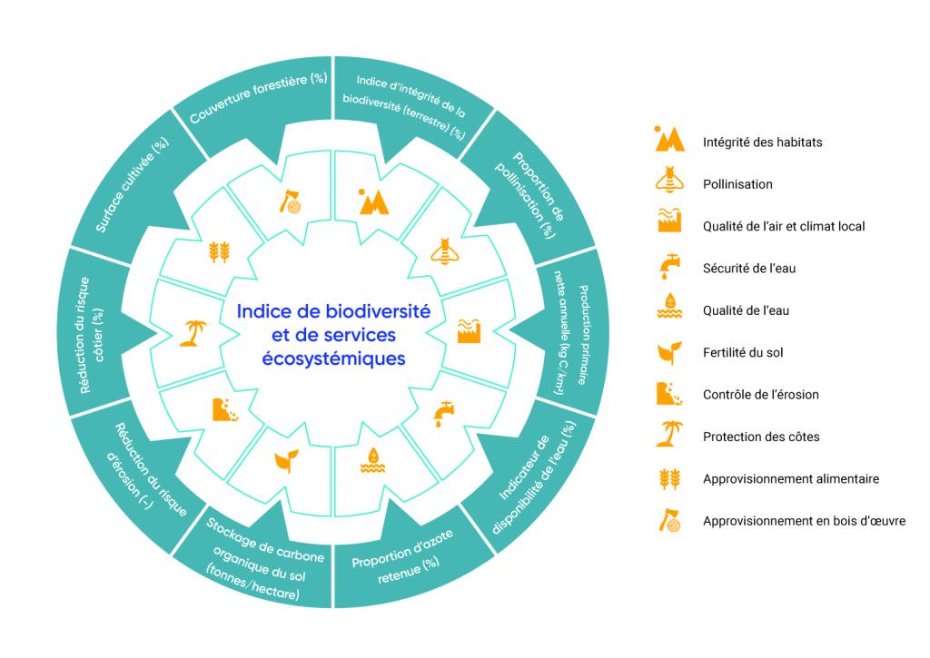 Le graphique circulaire présente dix catégories incluses dans l'indice de biodiversité et de services écosystémiques. Les dix services écosystémiques inclus sont l'intégrité de l'habitat; la pollinisation; la qualité de l'air et le climat local; la sécurité de l'eau; la fertilité du sol; le contrôle de l'érosion; la protection du littoral; l'approvisionnement en eau et l'approvisionnement en bois.