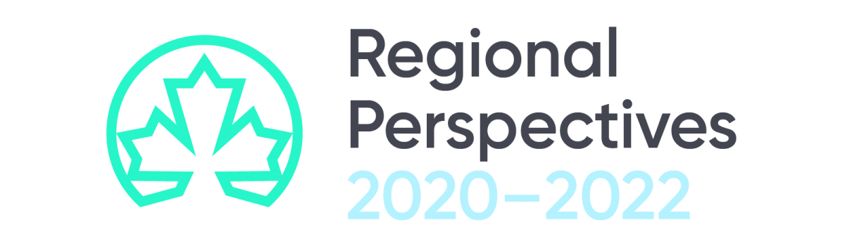 Regional Perspectives Report